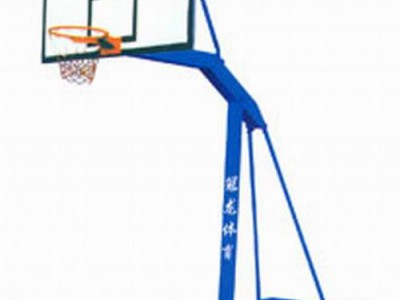 固定海燕式单臂篮球架