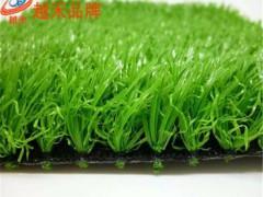 屋顶绿化种植无土人造草坪